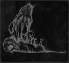 OwlCrusher_Album_Cover